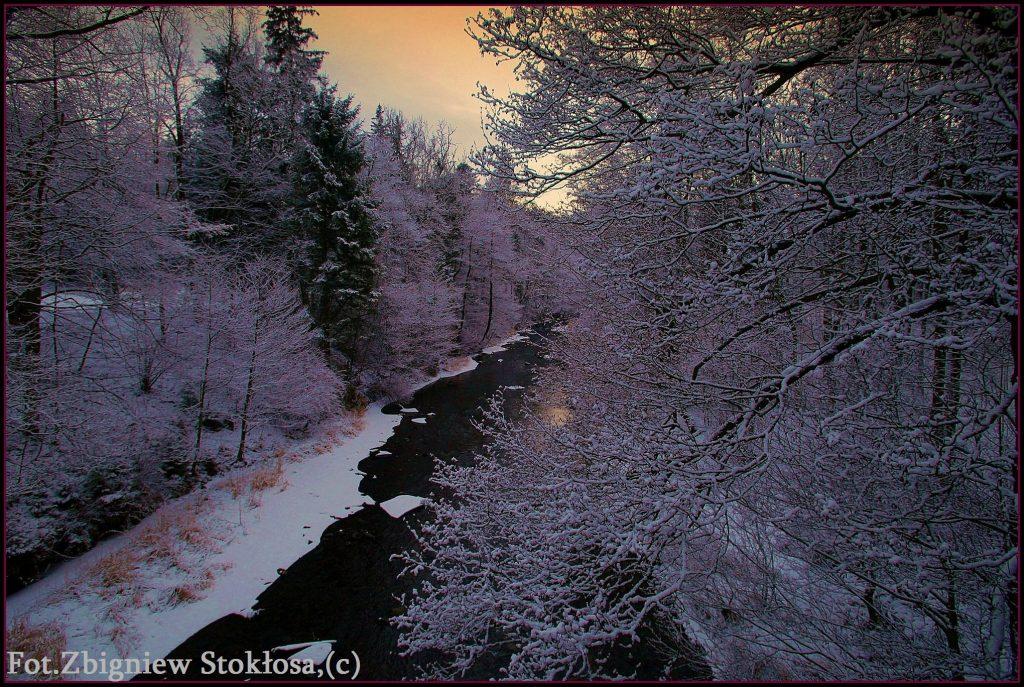 252srp-fot-zbigniew-stoklosaprawa-autorskie-zastrzezone-252